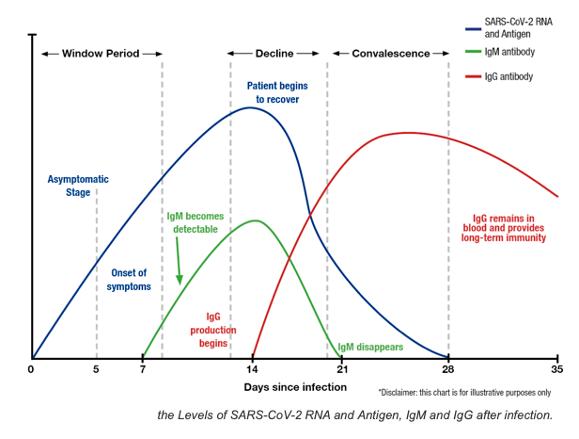 Antibodies Chart